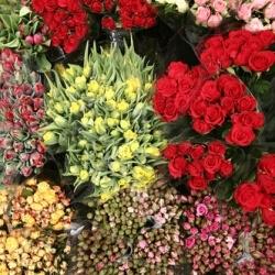 Цветы оптом в Хабаровске