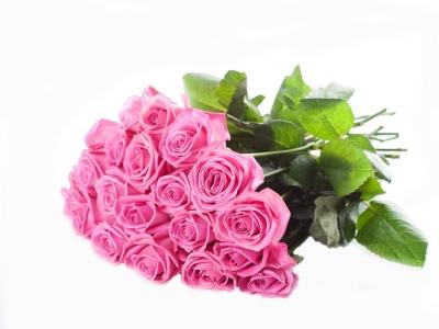 Букет из 15 розовых роз (стандарт)